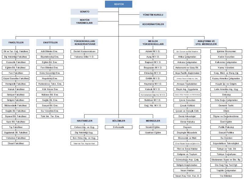 Finansal planlama: kuruluşun organizasyon ve faaliyet sırası